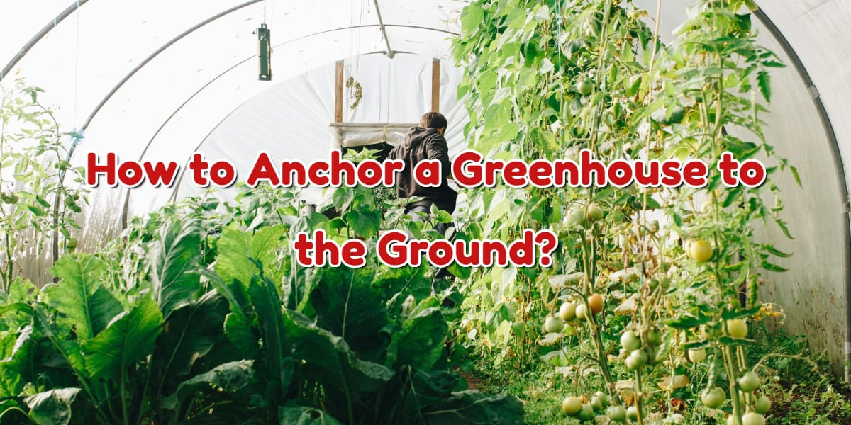 How to Anchor a Greenhouse to the Ground?