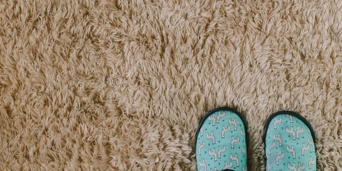 How to Fix Matted Down Carpet