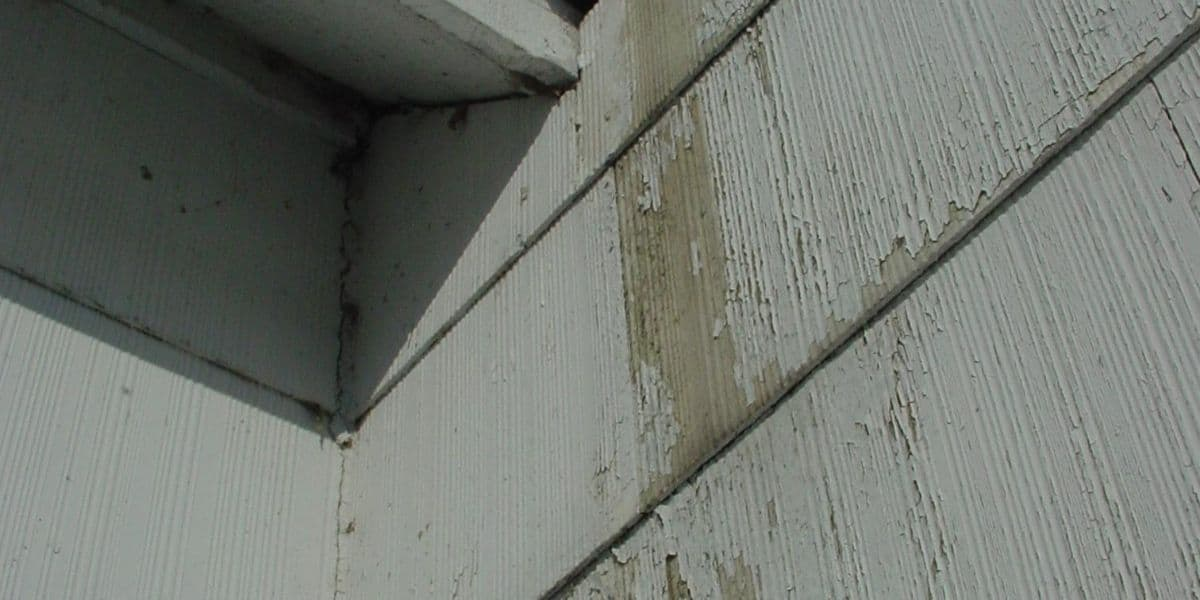 Best Primer For Asbestos Siding