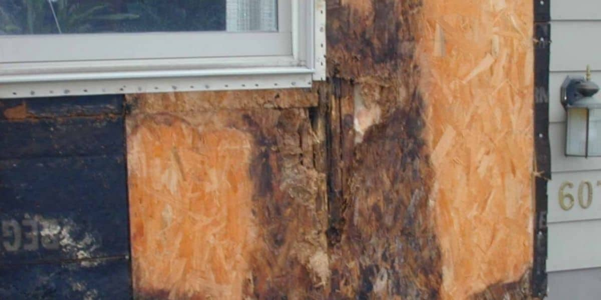 rotten plywood under siding