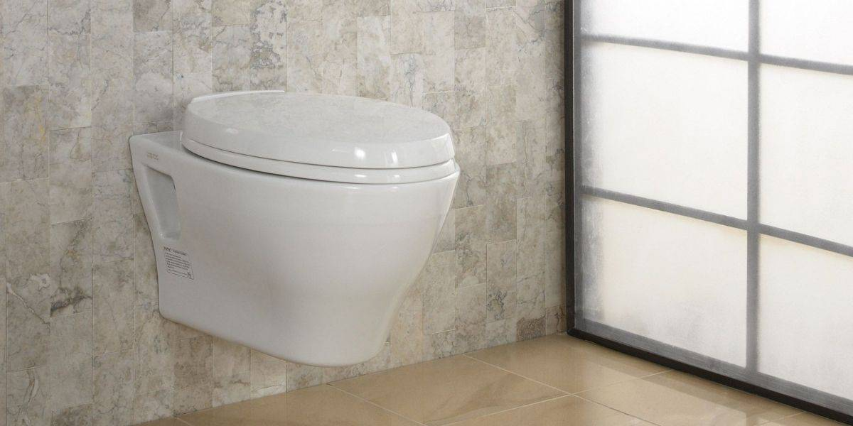 wall hung toilet problems