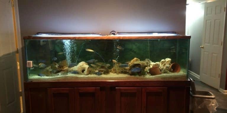 220 gallon aquarium weight