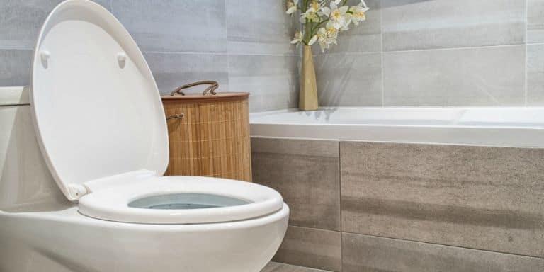 brown water in toilet
